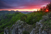 Green forest mountain at sunset with sun — Stock Photo