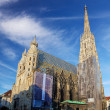 St. Stephan cathedral in Vienna, Austria — Stock Photo #18666005