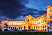 在维也纳霍夫堡皇宫夜,-奥地利 — 图库照片