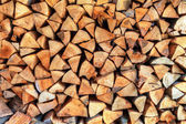 Wall of wood stump — Stock Photo