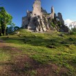 Ruin of Castle Hrusov — Stock Photo #19465853
