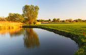 美丽的高尔夫球场与华丽的绿色和湖 — 图库照片