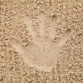 Hand in sand on beach — Stock Photo