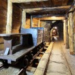 Wagons and machine in gold, silver and cooper mine - Stock Photo