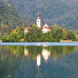 Slovenia lake Bled with mountain in background - landscape — Foto de Stock