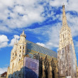 St. Stephan cathedral in Vienna, Austria — Stock Photo #20125557
