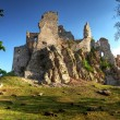 Ruin of Castle Hrusov — Stock Photo #20125685