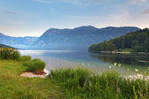 Beautiful view. Lake, mountain, reflection. Lake Bohinj. — Stock Photo