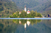 Slovenia lake Bled with mountain in background - landscape — Stock Photo