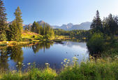 Nature mountain scene with beautiful lake in Slovakia Tatra - St — Stock Photo