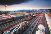Train Freight - Cargo transportation in railway - platform at ni — Stock Photo