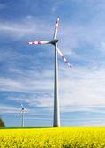 エコ エネルギー - 風力タービン — ストック写真
