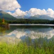Beautiful Lake in High Tatras - Stock Photo