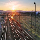 Railroad with train at sunset and many lines — Stockfoto