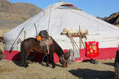 Inner Mongolia yurt in the grass land with mountain in backgroun — Stock Photo