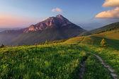 Skalisty szczyt o zachodzie słońca — Zdjęcie stockowe
