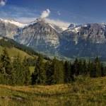 Schweizer Alpen mit der Hütte — Stockfoto