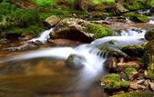 Waterfall In national park Krkonose - Czech - Cernohorsky waterf — Stock Photo