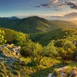 Stock Photo: Mountain forest panoram- Slovakia