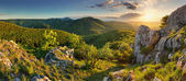 Mountain forest panorama - Slovakia — Stock Photo