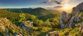 Mountain forest panorama - Slovakia — Stock Photo