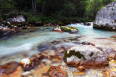 Kamniska Bistrica stream in Slovenia Alps mountain — Stock Photo
