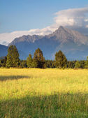 Slovakia mount Krivan - Tatras — Stock Photo