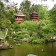 Japanese garden with house — Stock Photo