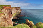 útes na islandu - latrabjarg — Stock fotografie