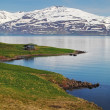 Iceland summer landscape. Fjord, house, mountains — Stock Photo