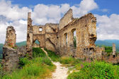 Ruin of castle - Povazsky hrad, Slovakia — Stock Photo