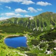 Stock Photo: Slovakimountain lake - Rohacske plesa, West Tatras