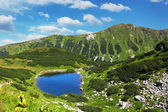 Slovakia mountain lake - Rohacske plesa, West Tatras — Stock Photo
