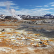 Mudpot in geothermal areHverir, Iceland — Stock Photo #30377723