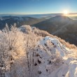 Trees covered with hoarfrost and snow in mountains — Stockfoto