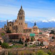 Gothic cathedral built in world, in Segovia — Stock Photo