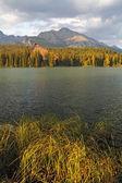 Nature mountain scene with beautiful lake - Strbske pleso, verti — Stock Photo