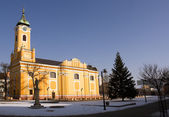 Church in small city Topolcany — Стоковое фото