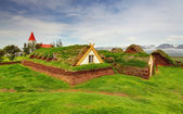 Lawn covering house, iceland original buildings — Stock Photo
