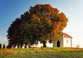Herbst baum und kapelle — Stockfoto