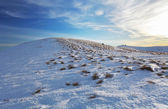 Winter mountains landscape at sunset - Slovakia - Fatra — Foto Stock