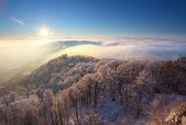 Zachód słońca zimą nad chmury — Zdjęcie stockowe