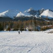 Skiing in High Tatras — Stockfoto