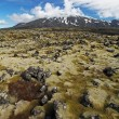Volcano in West Iceland with lava field - Snaefellsjokull — Stock Photo
