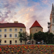 Zagreb Cathedral - panorama, Croatia — Stock Photo