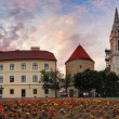 Zagreb Cathedral - panorama, Croatia — Stock Photo #35170801