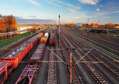 Train freight station - Cargo transportation — Stock Photo