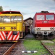 Two trains in depot — Stock Photo