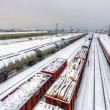 Cargo train platform at winter, railway - Freight tranportation — Foto Stock