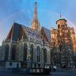 Stephan cathedral in Vienna, Austria — Stock Photo #38699731